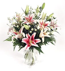 Stargazer Lilies from Bunn Flowers & Gifts, local florist in Pittsburg, TX